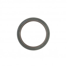 Waukesha Engines (Gas, LP, Diesel, Natural Gas) Rear Crank Seal, without Wear Sleeve (Lip Type) (176, 232, 265, 283, 310)