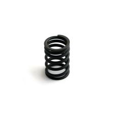 Fiat Engines (Diesel) Valve Spring (8365.05 (8102 CC), 8365.25 (8102 CC))