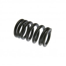 Perkins Engines (Diesel, Gas, LP) Inner Valve Spring, Intake Only (144, 152, 203)